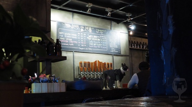 A dog standing on the brewery counter.