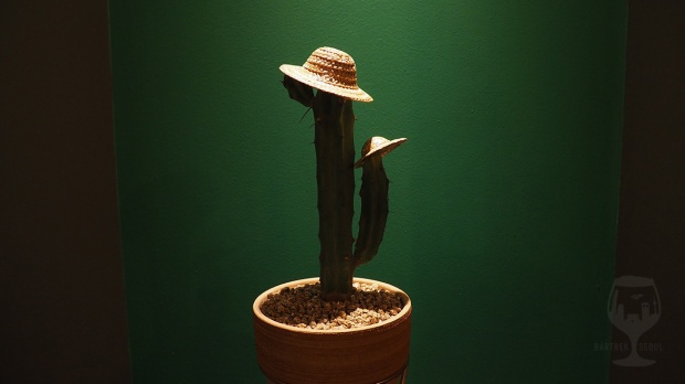 Cute cactus with straw hats.